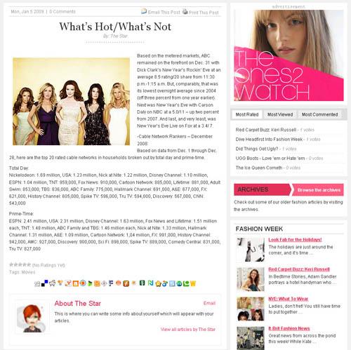 The Stars WordPress Theme Post
