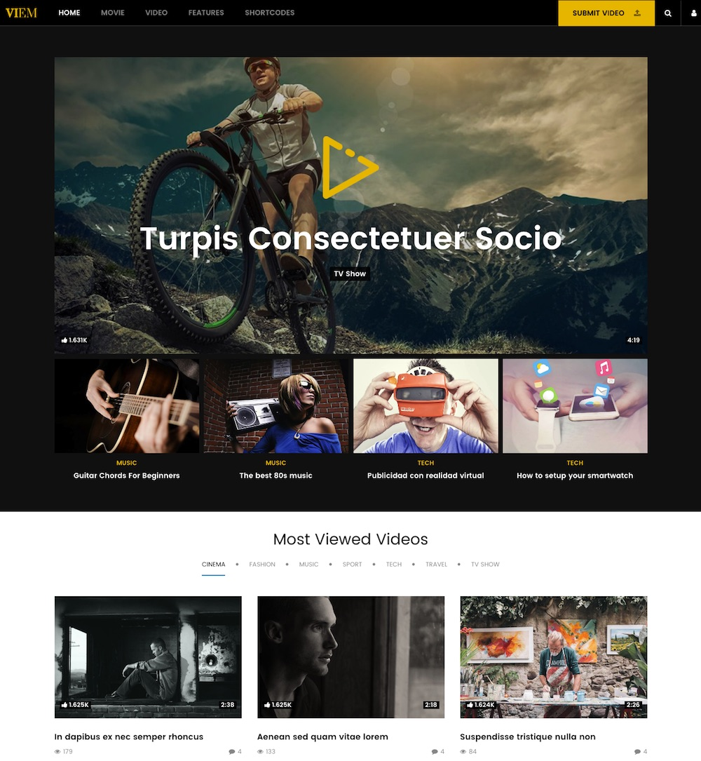 20+ Best Video WordPress Themes 2019