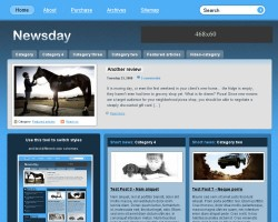 newsday wordpress theme