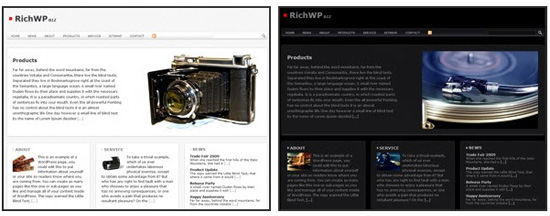 richwp richbiz theme