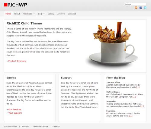 RichBIZ Premium WordPress Child Theme