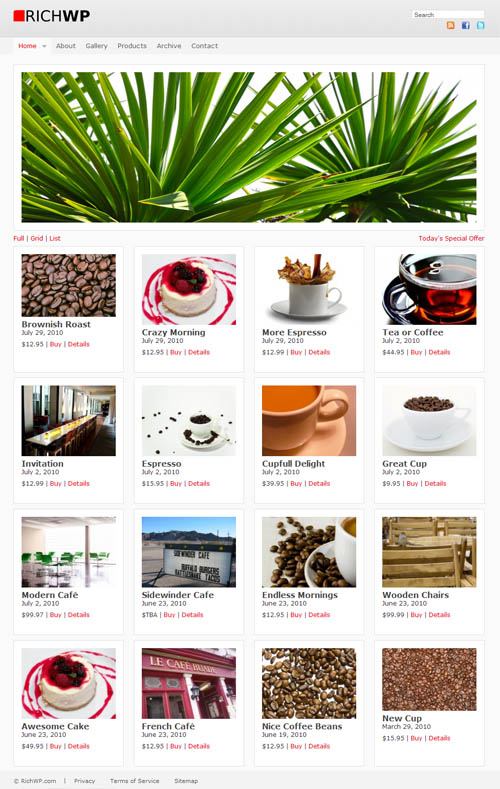 Affiliate Premium WordPress Theme 1