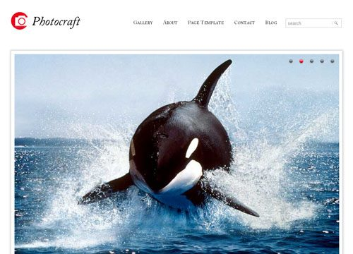 Photocraft Premium WordPress Theme