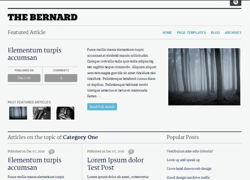 The Bernard Premium WordPress Theme