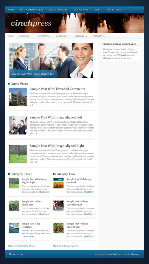 Read Before Buying the WordPress Thesis Theme