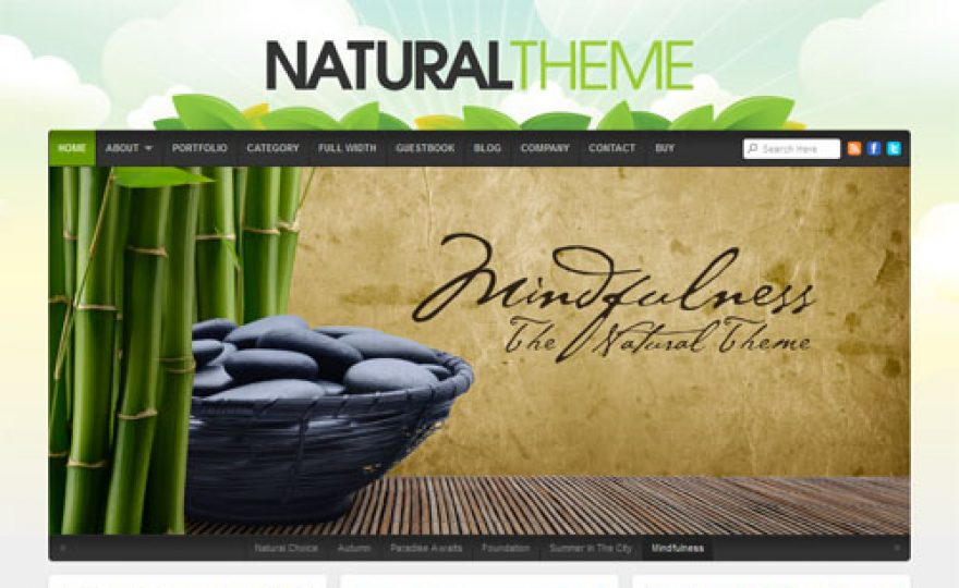 Natural Premium WordPress Theme