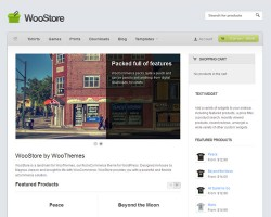 WooStore WordPress Ecommerce Theme