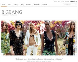 Big Bang Portfolio WordPress Theme