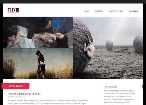 Elixir Portfolio Premium WordPress Theme