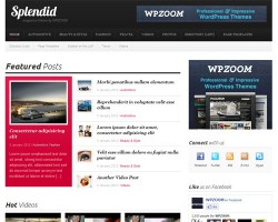 Splendid Magazine WordPress Theme