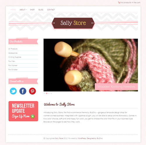 Sally Store Ecommerce WordPress Theme