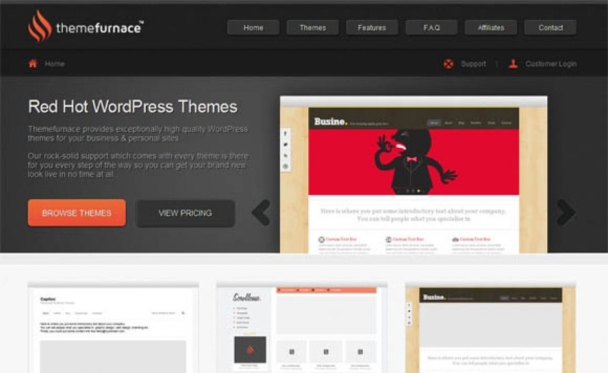 New Premium WordPress Theme Shops 2012