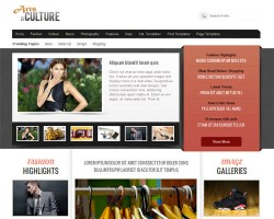Arts & Culture Magazine WordPress Theme