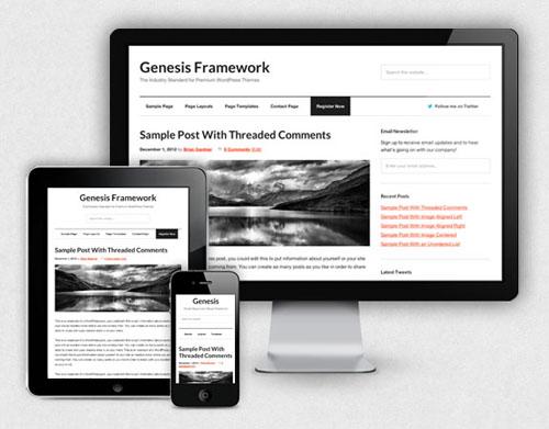 genesis-responsive