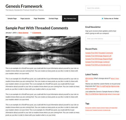 Genesis WordPress Theme