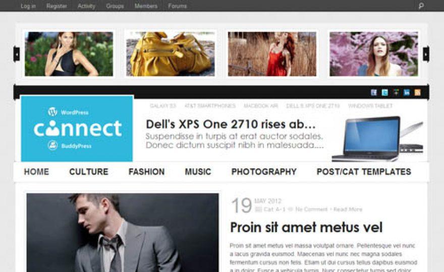 Connect WordPress and BuddyPress Theme
