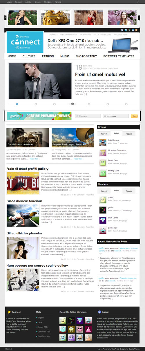 Connect WordPress and BuddyPress Theme