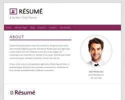 Wordpress resume theme