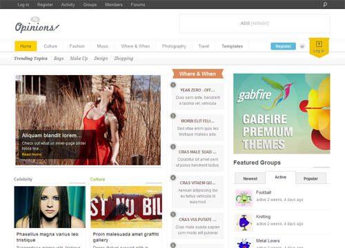 Community Magazine WordPress Theme with BuddyPress Integration – Options