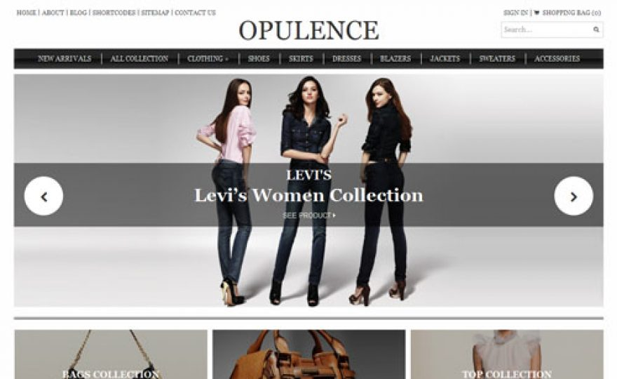 Ecommerce WordPress Theme for High End Fashion and Luxury Products