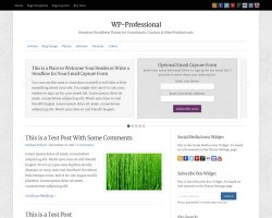 WP Professional Responsive WordPress Theme