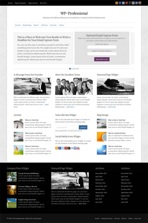 WP Professional business theme