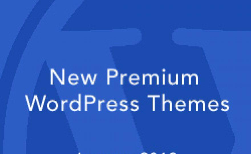 New Premium WordPress Themes January 2013