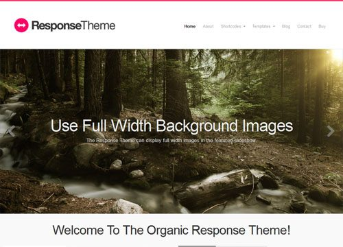 Fully Responsive, Retina Ready WordPress Theme – Response Theme