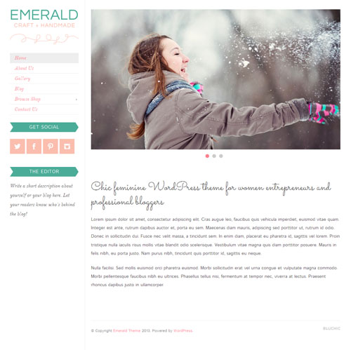 Emerald Responsive Premium WordPress Theme