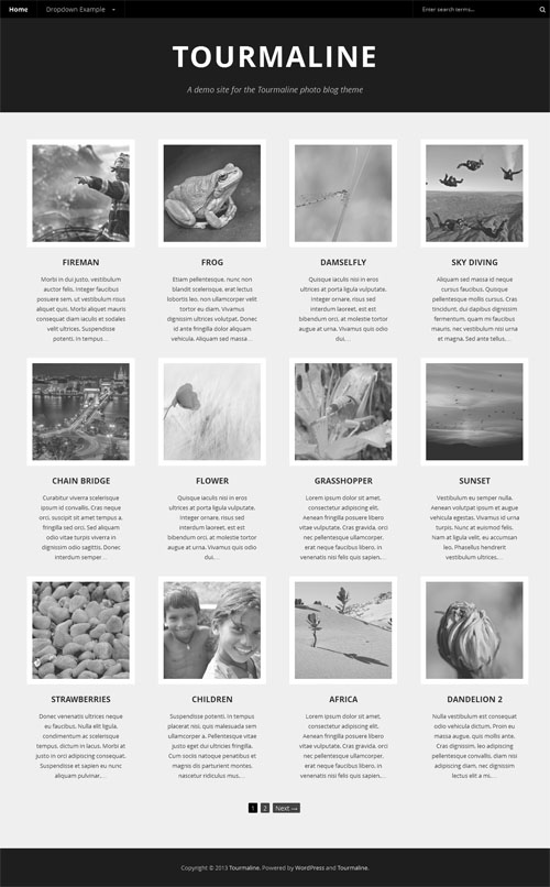 Responsive Photo Blog WordPress Theme