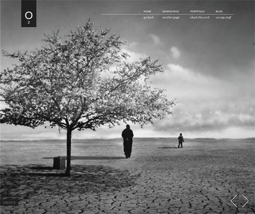 O2-viva-themes