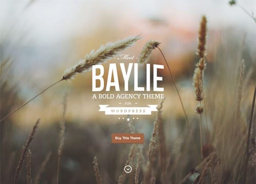 Bold & Modern Agency WordPress Theme: Baylie