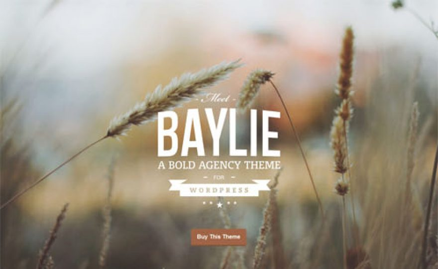 Bold & Modern Agency WordPress Theme: Baylie