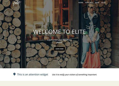 Elite Responsive Ecommerce WordPress Theme