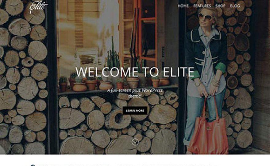 Elite Responsive Ecommerce WordPress Theme