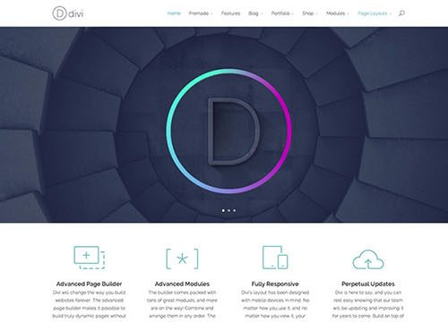 Divi – Powerful and Flexible WordPress Theme with Unlimited Possibilities