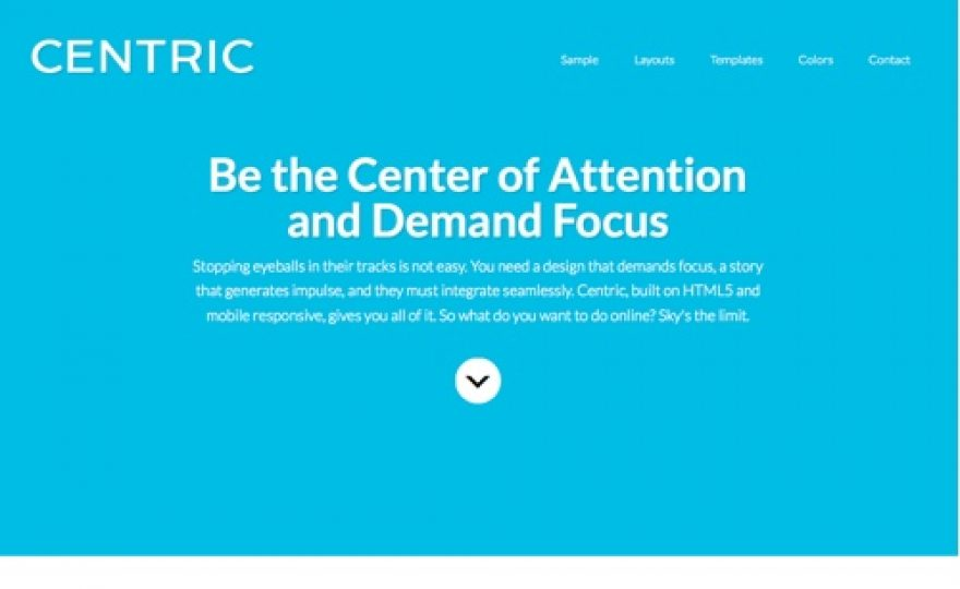 Centric Pro Premium WordPress Theme