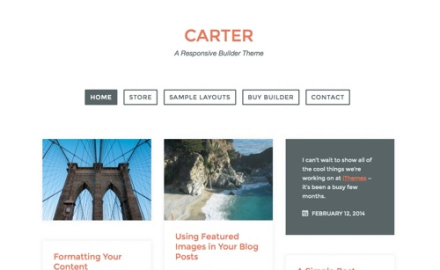Masonry Grid WordPress Theme for Blogs and Ecommerce Stores: Carter