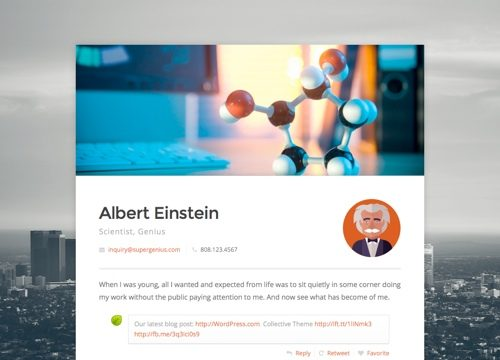 Virtual Business Card WordPress Theme: Connect