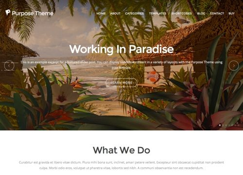 Purpose – A Modern Business WordPress Theme