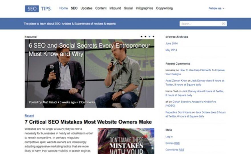SEO Tips Blogging WordPress Theme