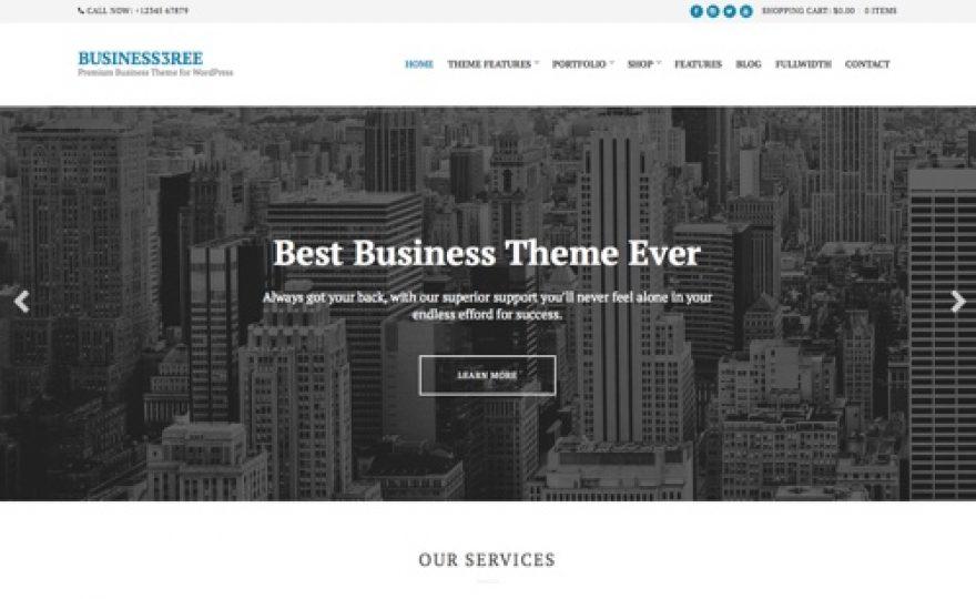 Business3ree: WordPress Business Theme