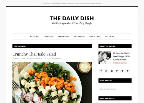 Food Blog WordPress Theme – Daily Dish