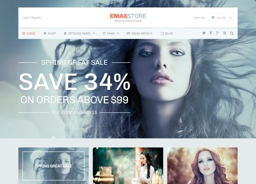 eMaxStore WordPress Ecommerce Theme