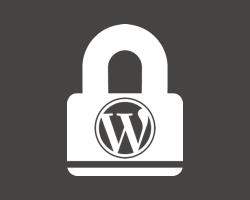 10 Top Security Plugins for WordPress