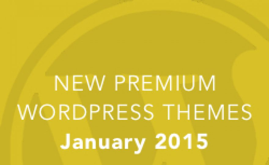 New Premium WordPress Themes: January 2015
