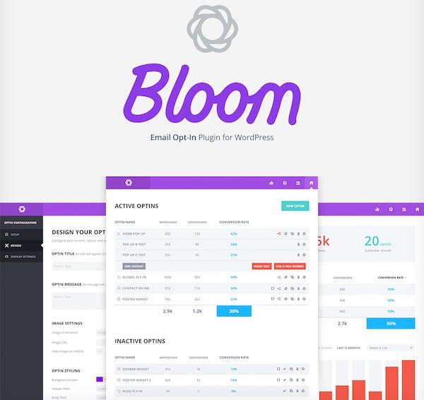 bloom-dashboard