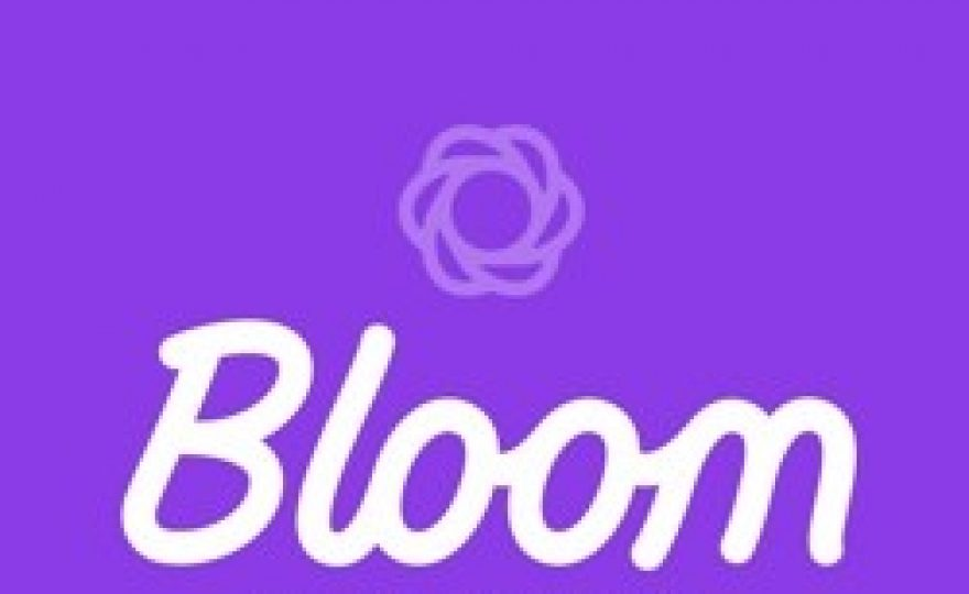 Bloom Email Opt-in Plugin for WordPress – First Impressions Review