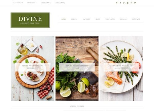 Devine Premium WordPress Theme