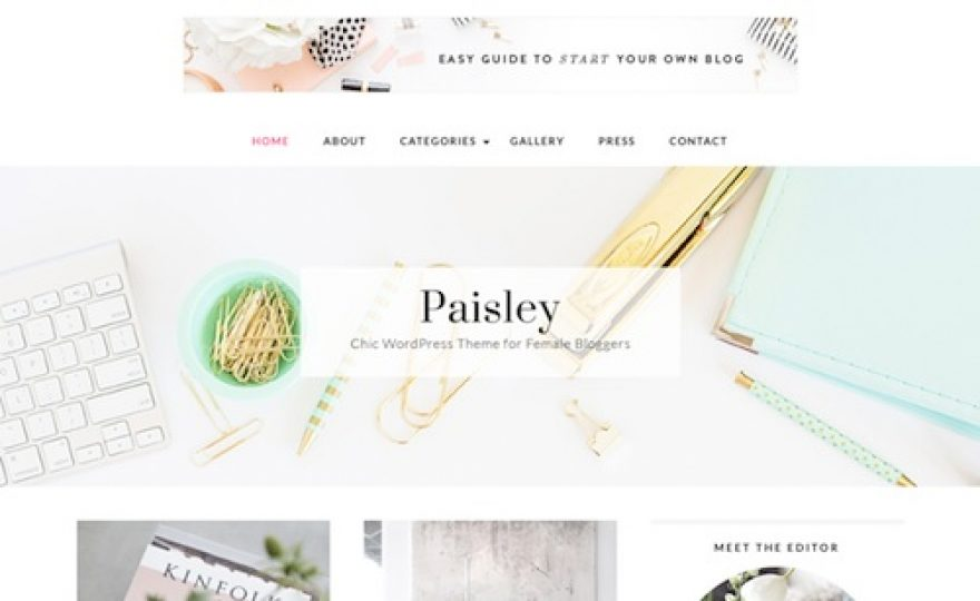 Paisley WordPress Theme
